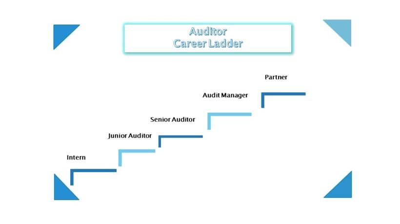 AuditorCareerLadder